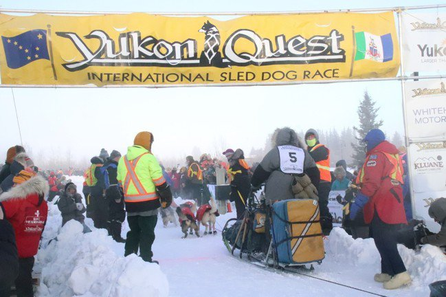 育空大競疾(Yukon Quest)各支隊伍起跑前的準備盛況。 圖/游慧君、陳志...