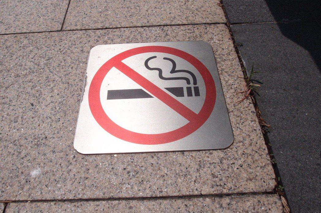 台灣市售菸品超過百款,薄荷口味不在少數。本報系資料照片 本報資料照片