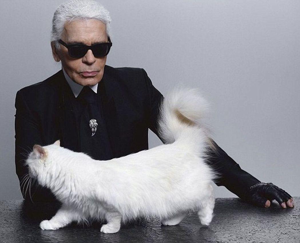 拉格斐狂戀愛貓邱比特,簡直想和牠成婚。圖/取材自英國每日郵報