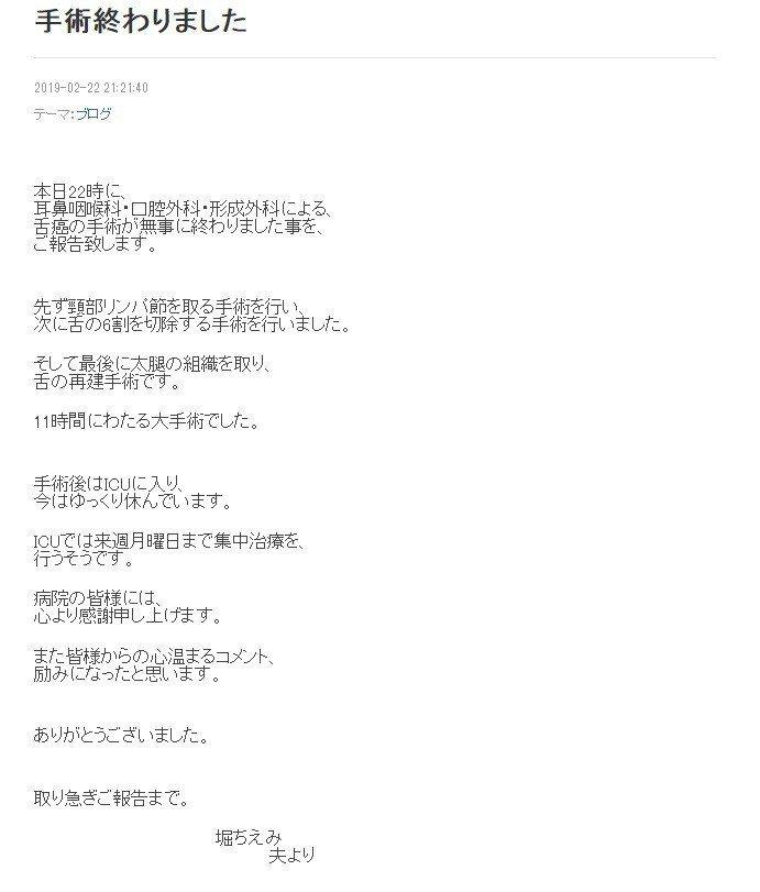 圖翻攝自堀智榮美網誌