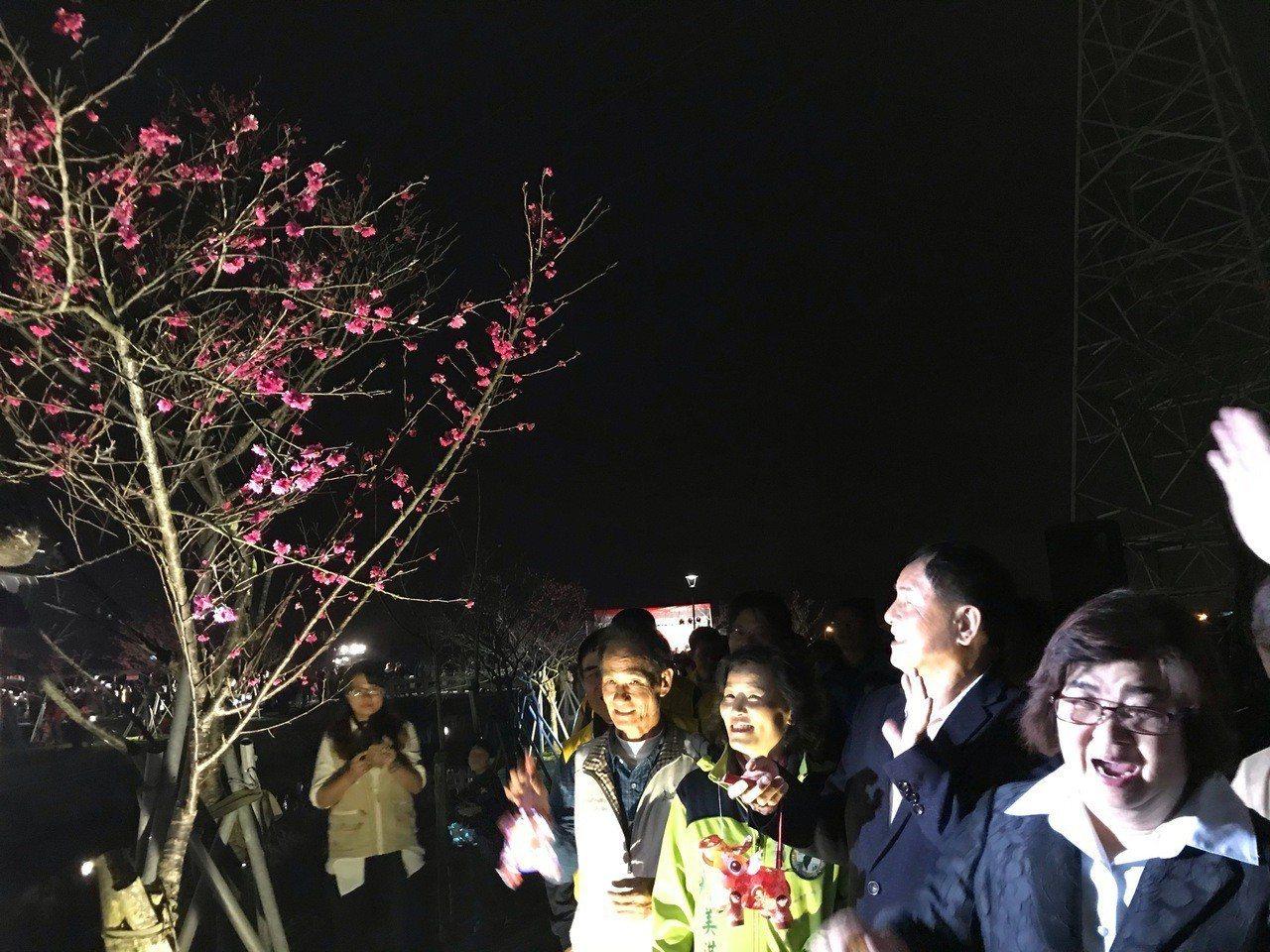羅莊櫻花步道長約2公里,種植了近1200棵櫻花樹,除白天賞花,宜蘭縣羅東鎮公所編...