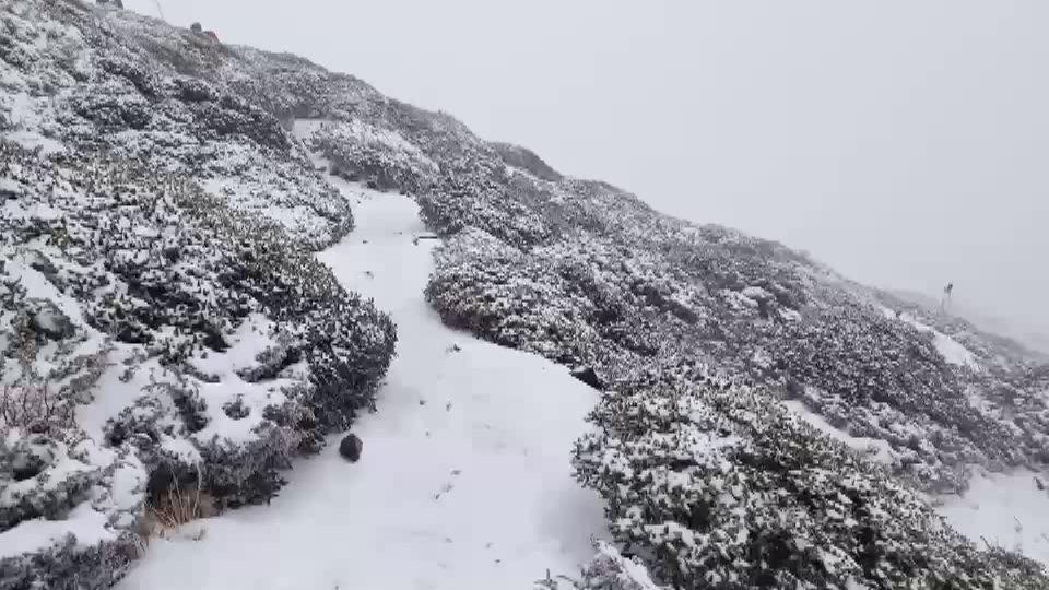 雪山地區今年第二場雪,雪山圈谷以上積雪10公分,山友讚嘆美極了。圖/山友林心聖提...
