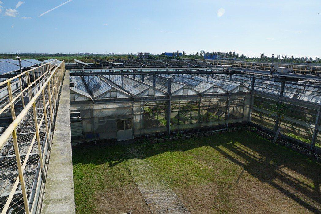 在第四代溫室計畫中,陳貴光將太陽能固定方向,這樣透進溫室的日照比例也會有大幅度的...