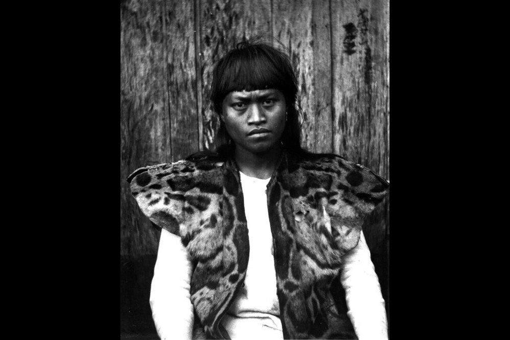 雲豹在古老的魯凱世界觀佔有一席之地。圖為肩上披著雲豹外皮的魯凱族青年,攝於1900年。 圖/維基共享
