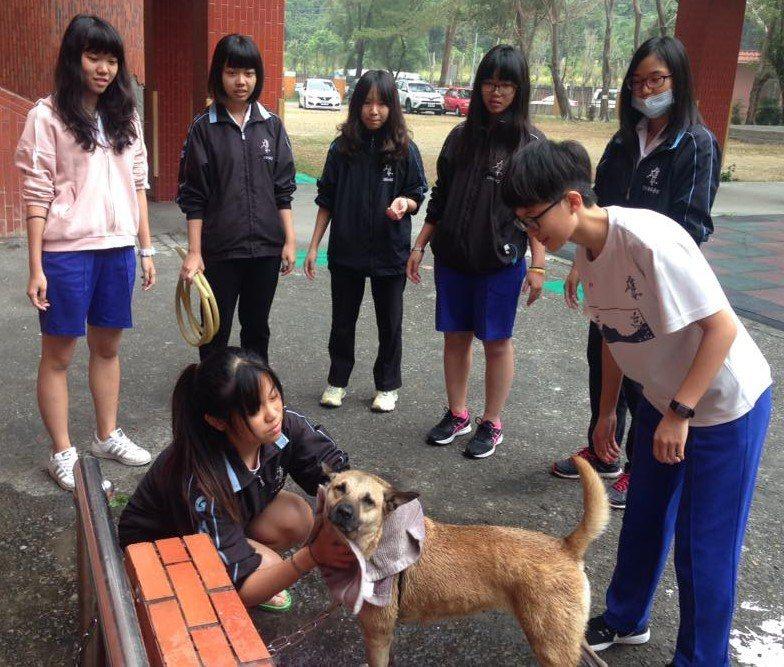 雄女校犬「安安」與學生互動融洽。圖/台灣動物緊急救援小組提供