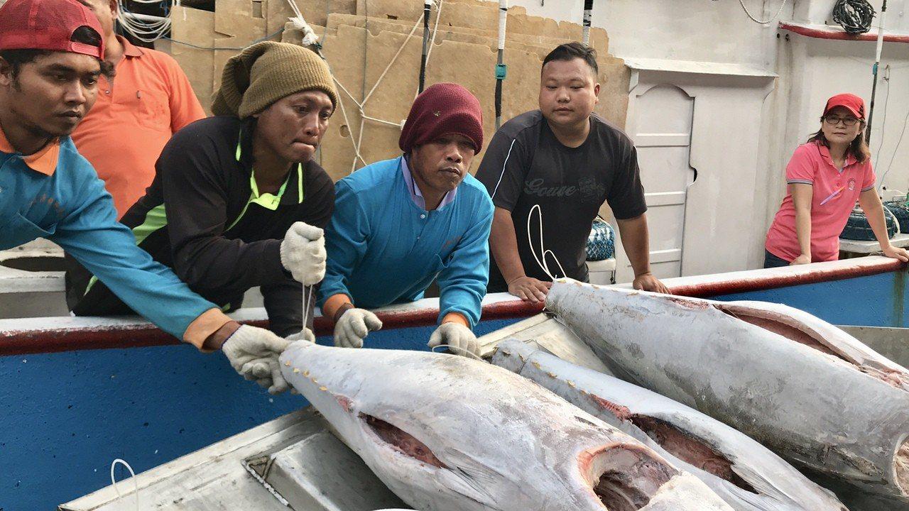 行政院長蘇貞長視察東港魚市場,對新內閣團隊民調滿意度達4成6的數據,表示我們是做...