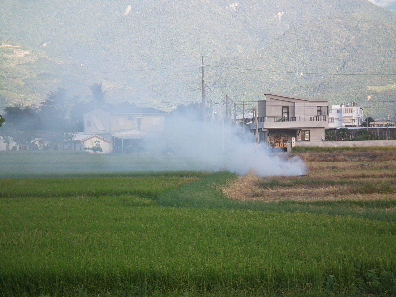 台東縣水稻種植面積居全縣之冠,部分農民常會以傳統燃燒方式處理稻梗。記者尤聰光/攝...