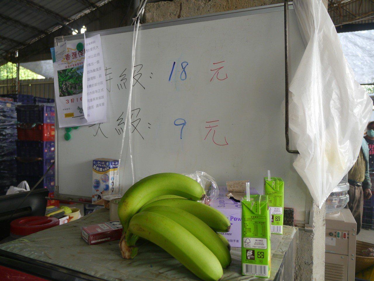 香蕉產地收購價不一,農委會人員今天視察的集貨場收購價是上蕉每公斤18元、次蕉9元...
