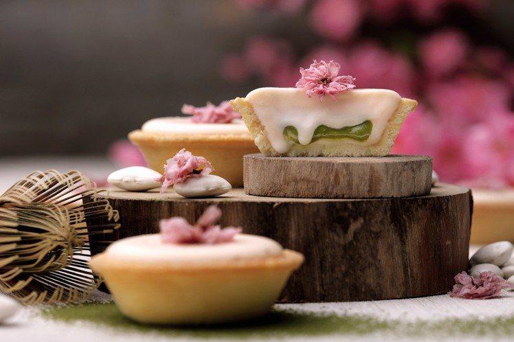 櫻花抹茶白豆起士塔,單個售價65元。圖/安普蕾修提供