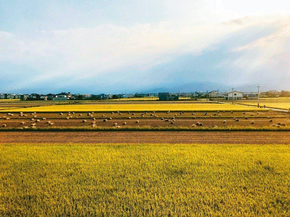 江宅望出去的宜蘭鄉居秋景。 圖/陳立凱攝影、江振誠提供