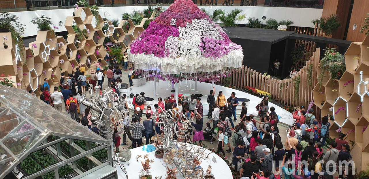 台中花博人潮多,民眾在太陽下排隊要進花舞館。記者游振昇/攝影