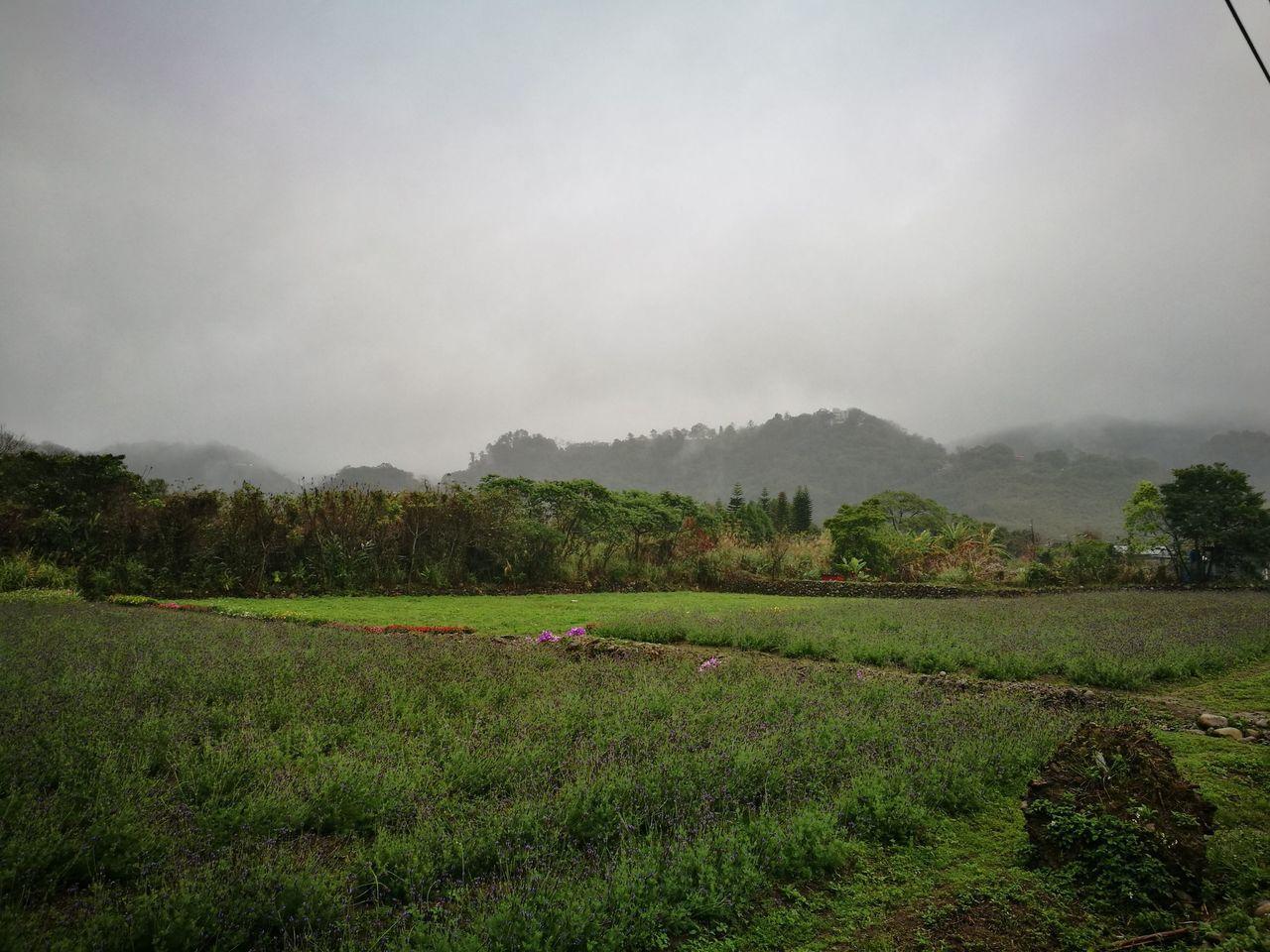 經濟部水利署把握鋒面過境,今天中午在對流雲系顯著時,進行地面人工增雨作業。圖/桃...