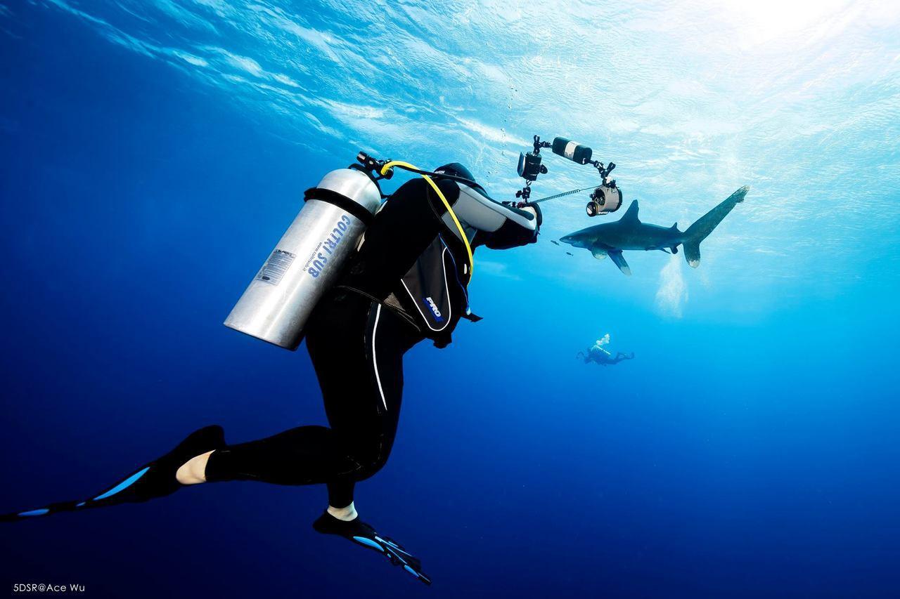 為和家人朋友分享海裡所見所聞,吳永森自學水中攝影。 圖/吳永森提供
