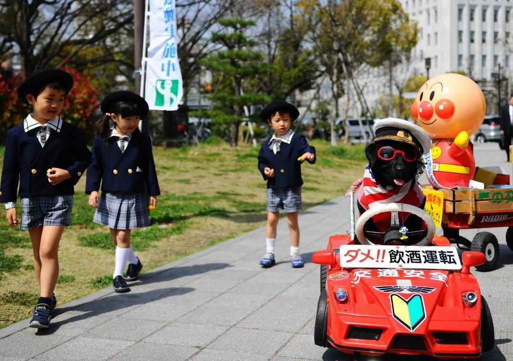 圖為4月6日於日本大阪舉辦的交通安全週。 圖/新華社