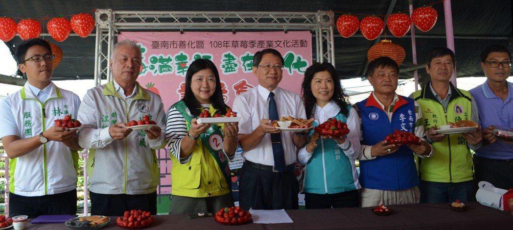 方澤心及民意代表等人歡迎民眾到善化採草莓嘗鮮。  陳慧明 攝影
