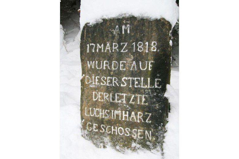 立於1893年的碑文:「在1818年3月17日哈茲最後一隻猞猁在此處被槍殺。」這...