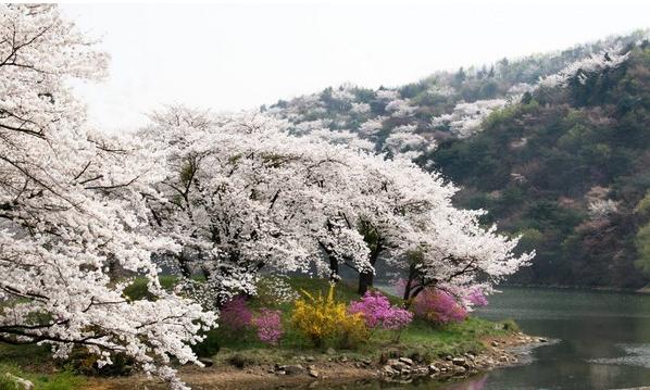 京畿道 圖/京畿道觀光公社