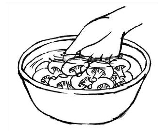 ●以清水蓋過香菇浸泡●用手輕輕翻動 圖/摘自《正確洗菜,擺脫農藥陰影:家...