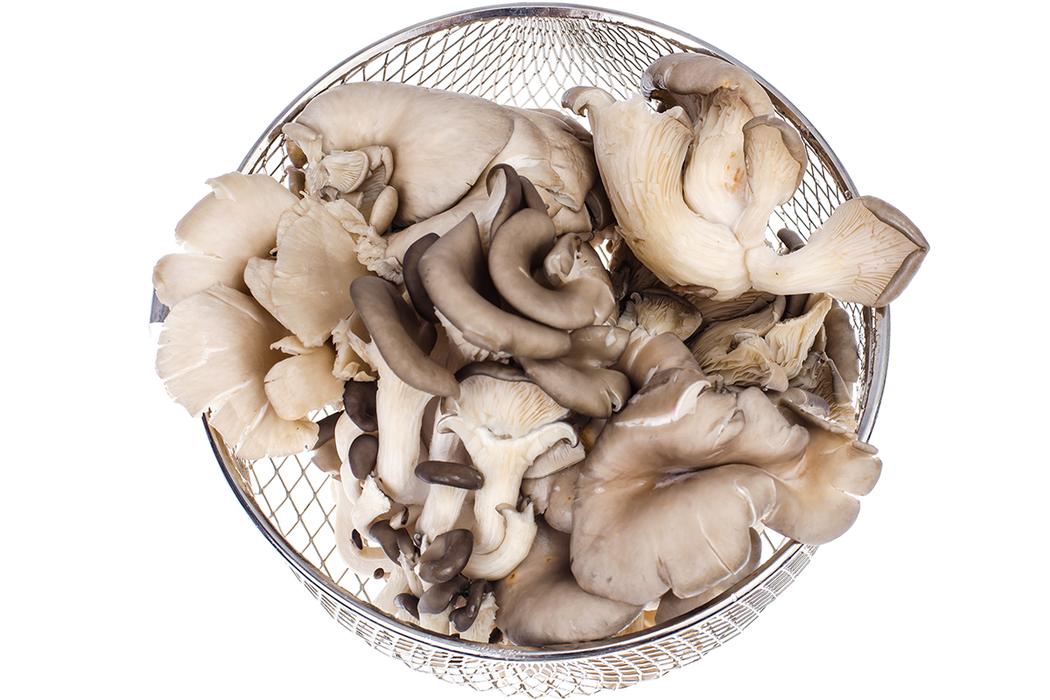 其實種植菇蕈類作物時,為維持環境及避免雜菌生長,還是需要許多農藥的協助。 圖/i...