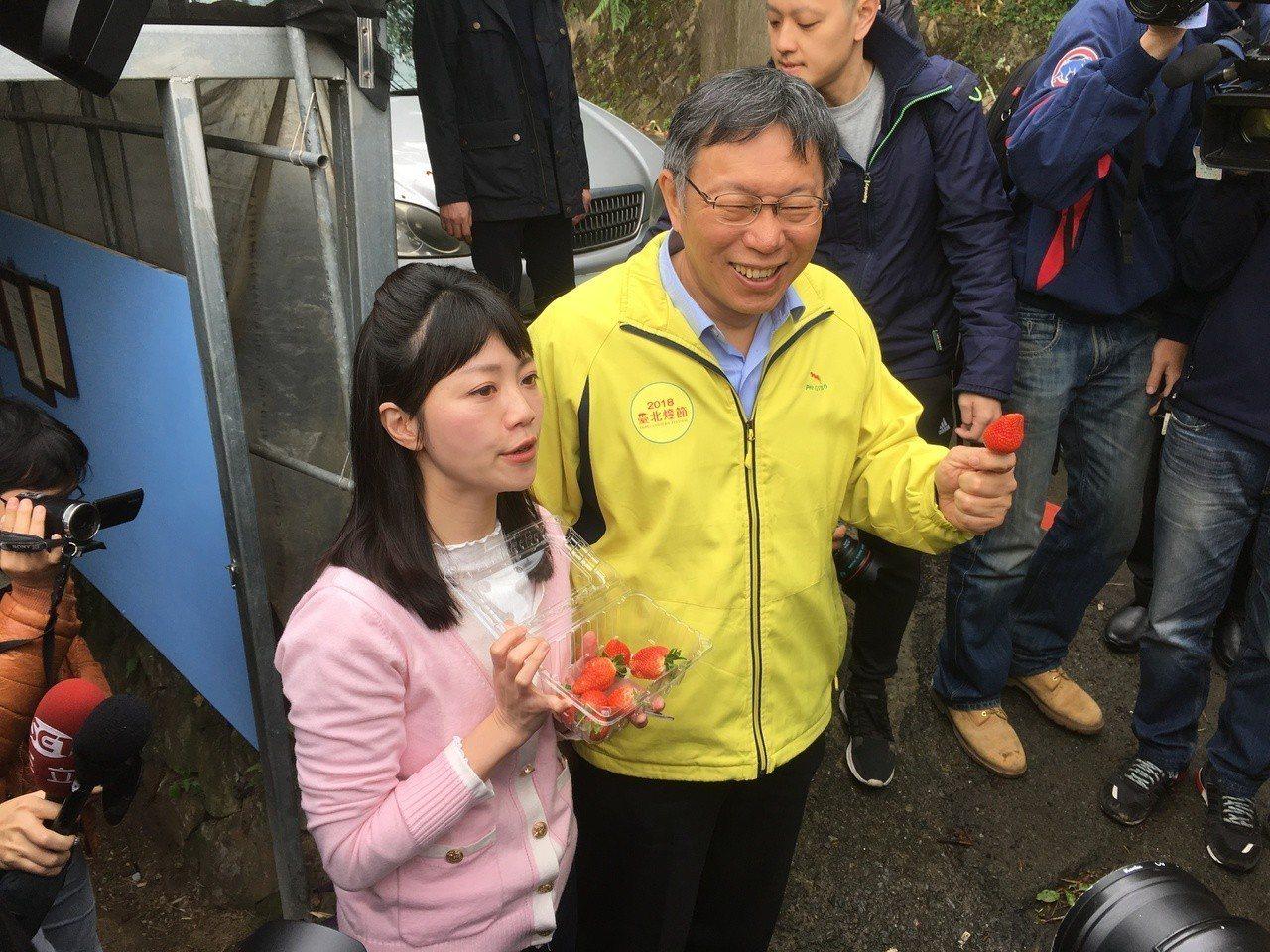 台北市長柯文哲今早出席「體驗內湖草莓休閒農業」活動。記者張世杰/攝影