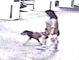 張姓女子外出遛狗,愛犬遭1名婦人牽著的大狗攻擊,頭部受傷死亡。圖/翻攝自飼主臉書