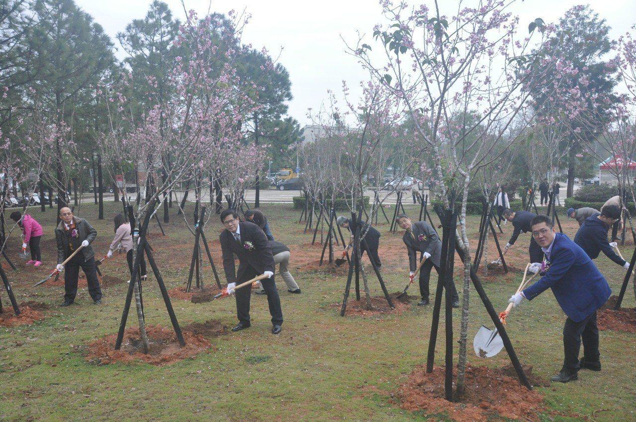 為了讓櫻花植栽更茂盛,金大今邀請各界嘉賓和學校師生代表一起種下美麗的櫻花。記者蔡...