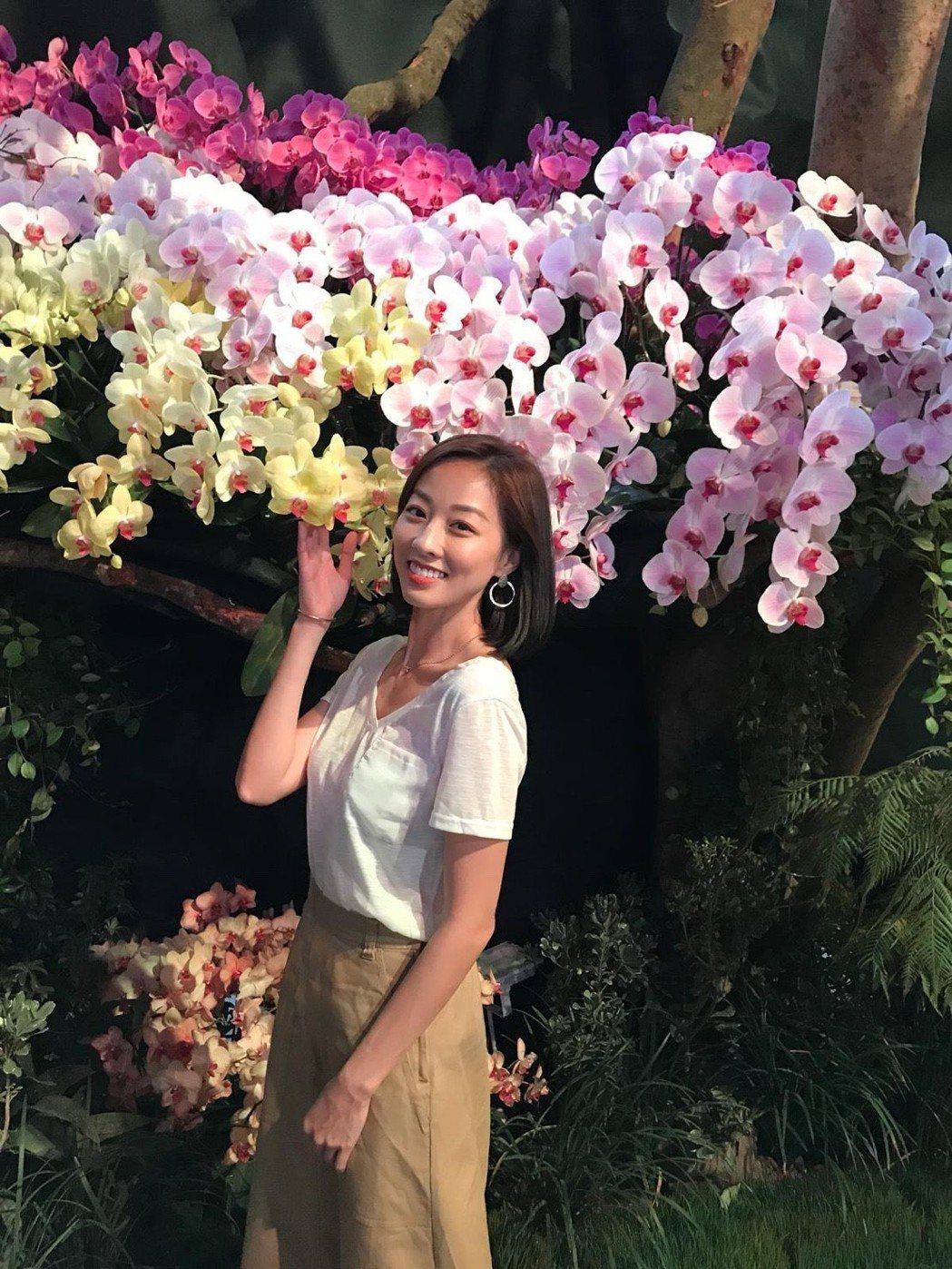 夏語心推廣台南蘭花展。圖/三立提供