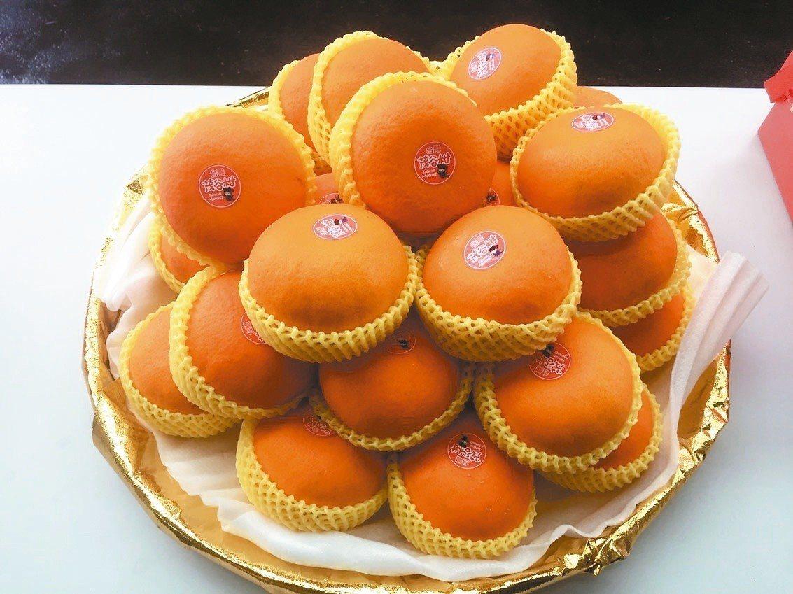 鮮嫩多汁的茂谷柑正值產季。 圖/台中市農業局提供