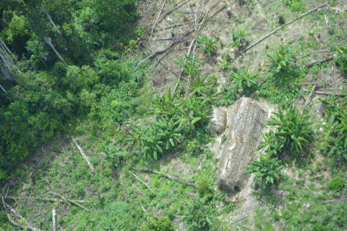 科魯波人生活的查瓦利溪谷地區一景,攝於2019年2月。 圖/路透社
