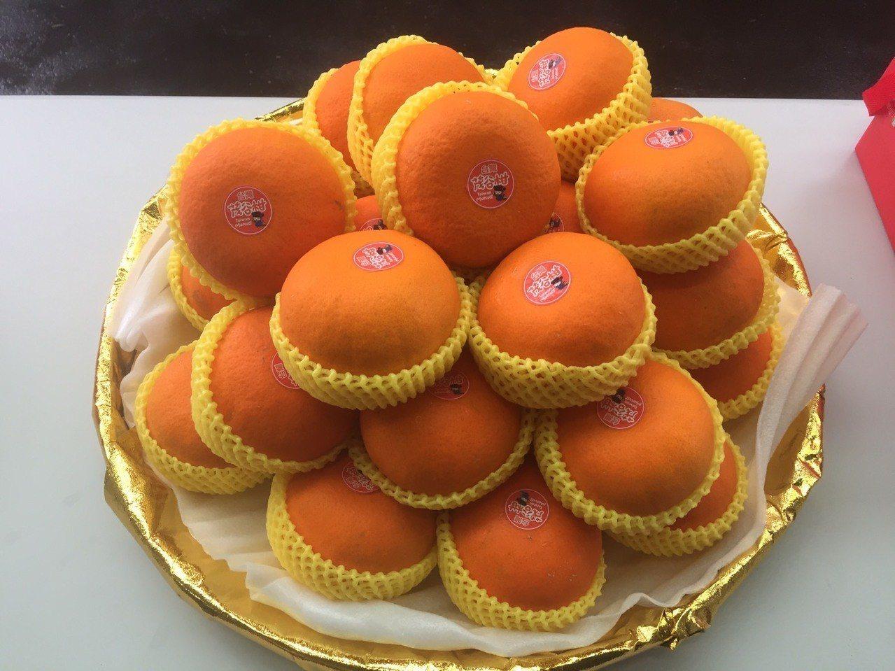 鮮嫩多汁的茂谷柑正值產季。圖/台中市農業局提供
