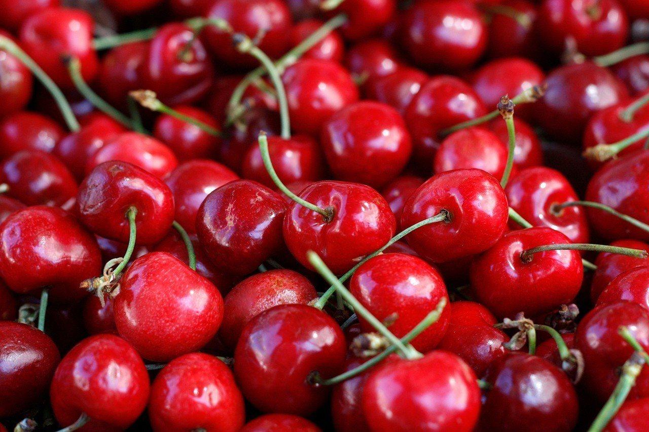 據智利水果公司COPEFRUT估算,2018至2019年春季出口到大陸的櫻桃數量...
