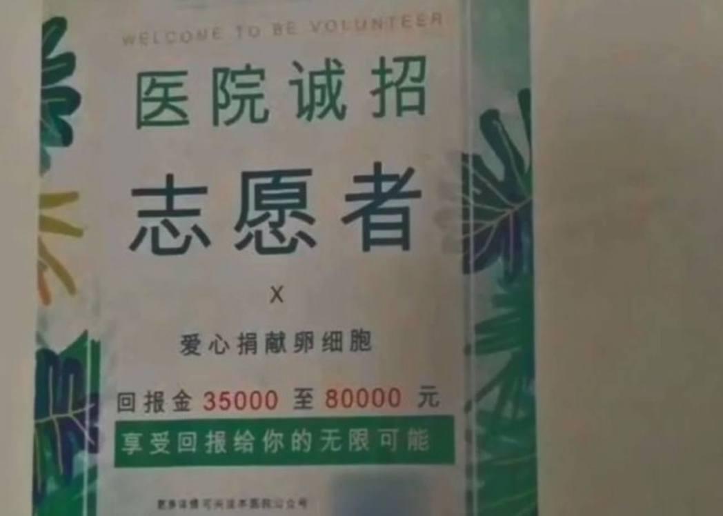校園內「捐卵」廣告,吸引想賺「快錢」的女學生。 (取材自新京報)