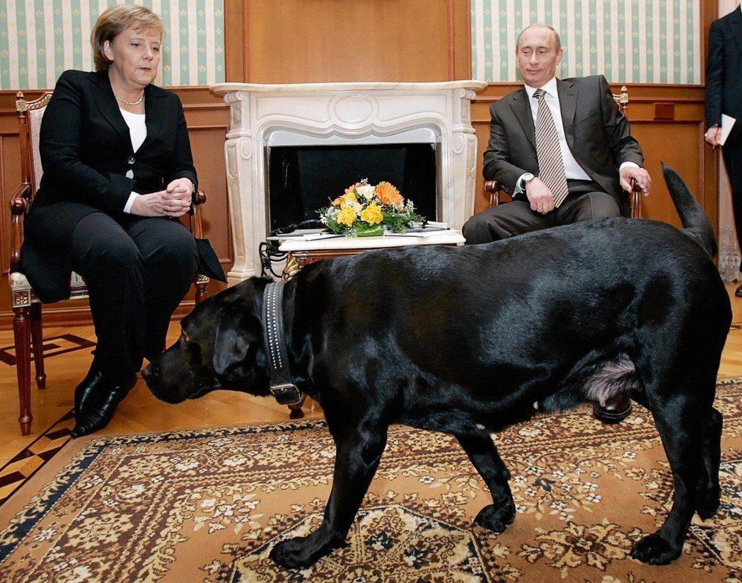 俄羅斯總統普亭(右)2007年會見來訪的德國總理梅克爾(左),曾讓愛犬從梅克爾身...