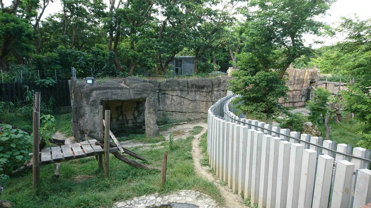 高雄市壽山動物園在做觀迎貓熊的準備。記者謝梅芬/攝影