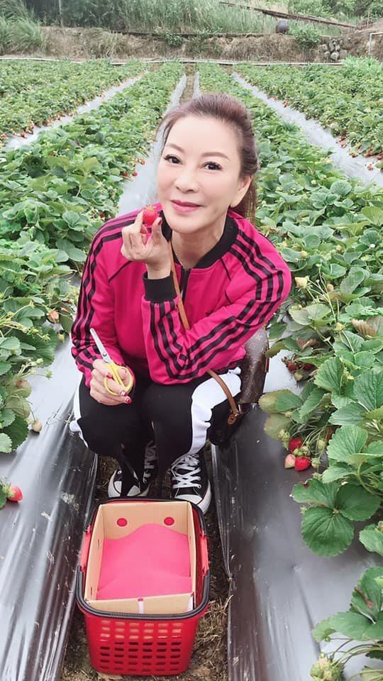 楊繡惠最近遭到女粉傳訊騷擾。 圖/擷自楊繡惠臉書