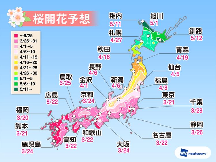 日本各地櫻花開花時間預測表。圖/擷取自weathernews官網