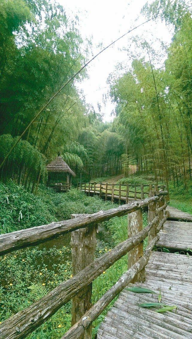雲林古坑草嶺地區擁有自然美景。 圖/聯合報系資料照片