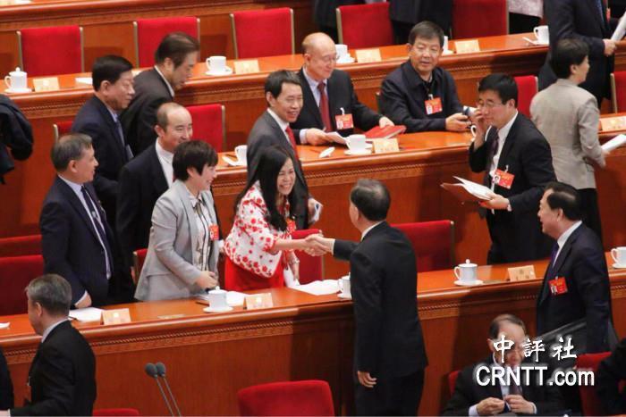 大陸全國政協主席汪洋(中),在兩會與凌友詩握手致意。 圖/取自中評網
