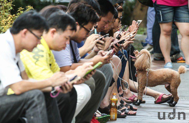 4G資費戰持續開打,近期市場傳出,台灣大及遠傳低調針對特定客戶,推出499元上網吃到飽、網內打到飽資費。 聯合報系資料照/記者林伯東攝影