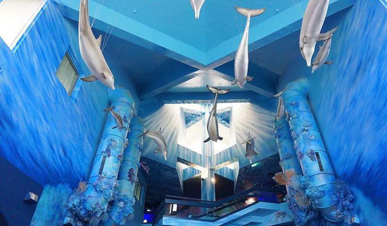 圖/摘自澎湖水族館Penghu Aquarium官網