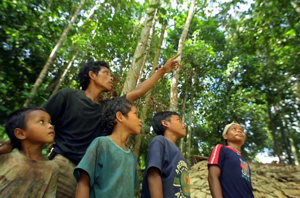 「是不是住在樹上?」「會不會騎大象上學?」這時我已經去過數次馬來西亞,於是跟著義...