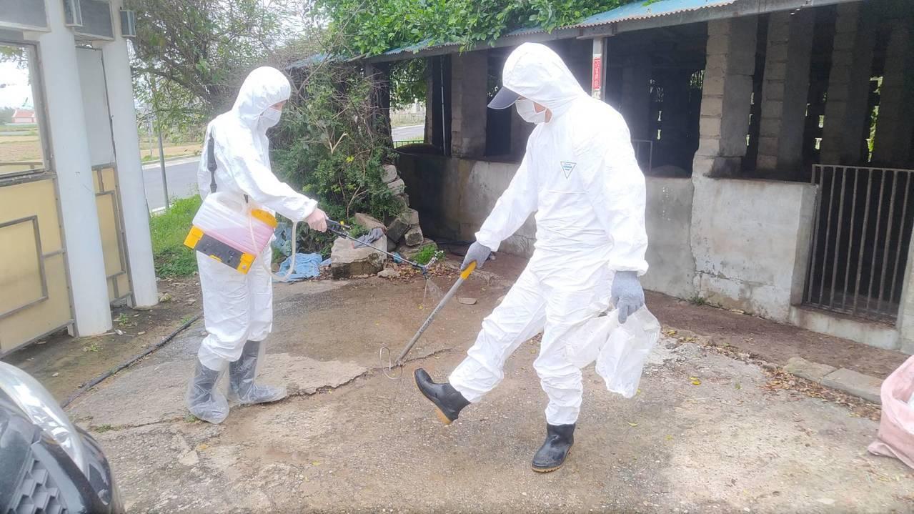 金門縣動植防疫所今對烈嶼全島共8個豬場進行訪視及採樣,所有人員車輛都要進行消毒。...