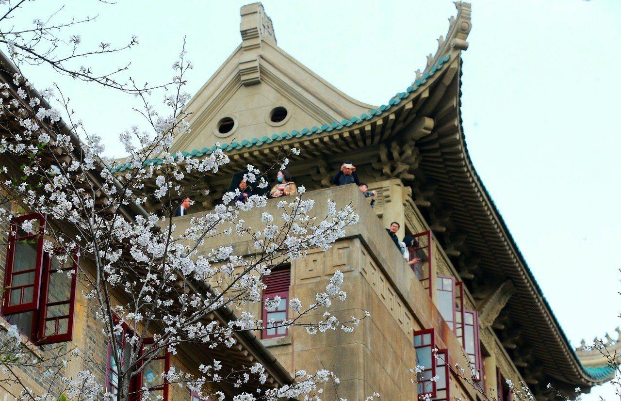湖北省台辦宣布,包括武漢大學在內的15所湖北知名大學院校,今年將免試招收台灣高中...
