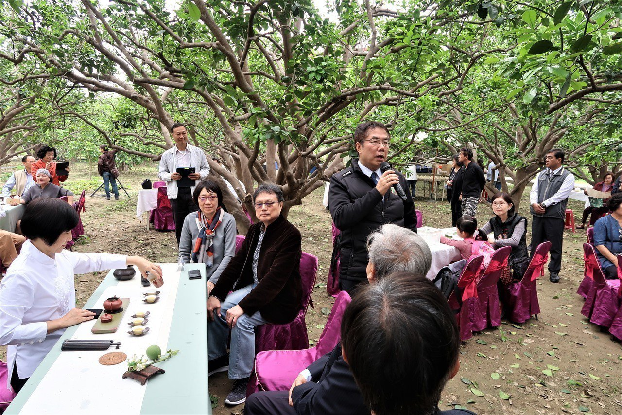 台南市文化局今天在麻豆區磚井社區柚花巷舉辦的「柚花巷茶席音樂會」,市長黃偉哲邀請...