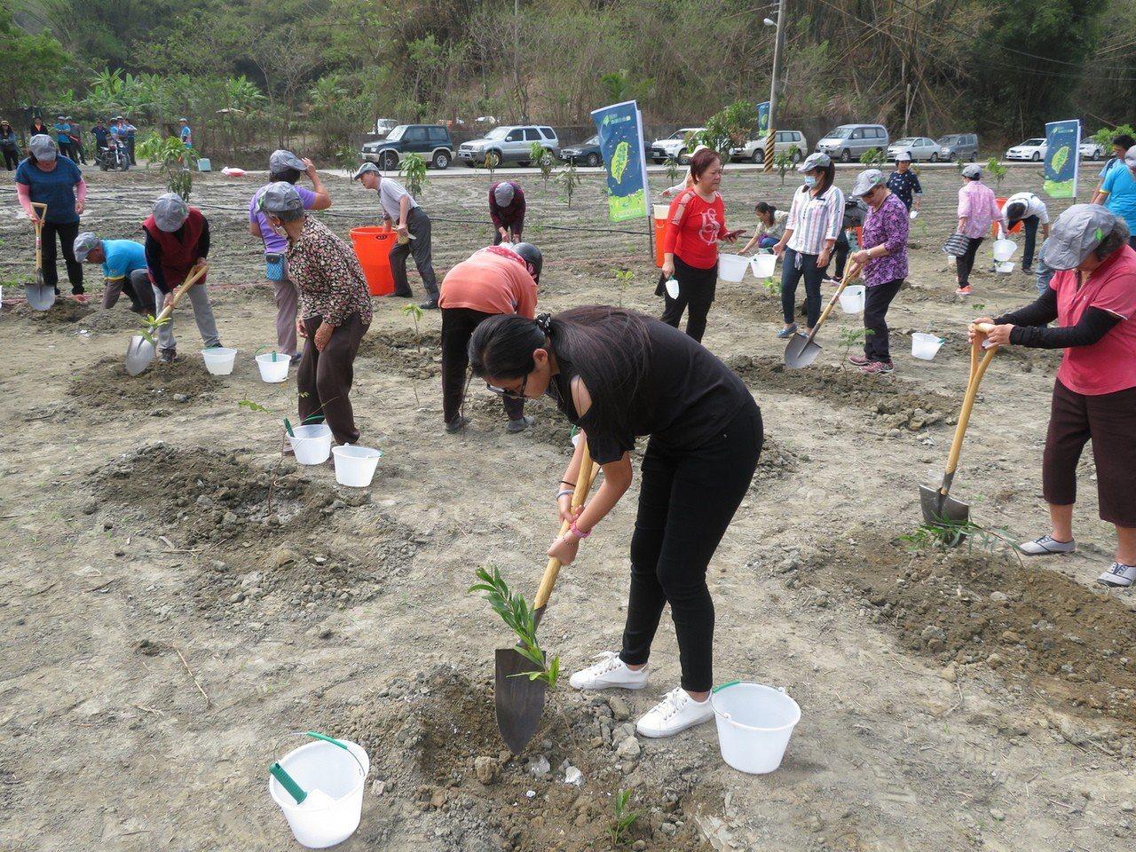 植樹人員在月世界的青灰岩地形中種植白千層、相思樹、九芎等樹種。圖/林務局提供