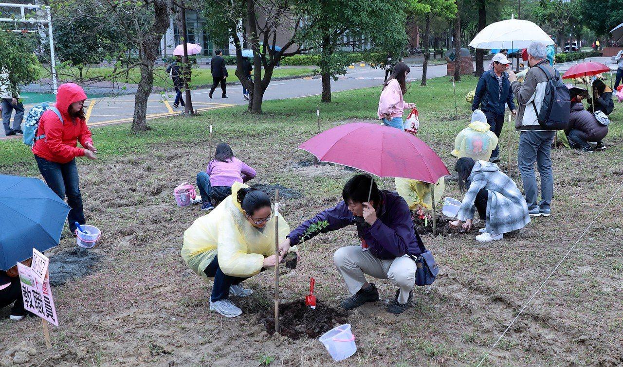 社區民眾與台北大學師生共同在校園內栽植流蘇。圖/台北大學提供