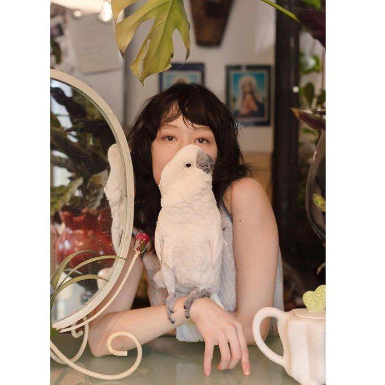 Mae Lapres家裡養了三隻鸚鵡。圖/摘自IG