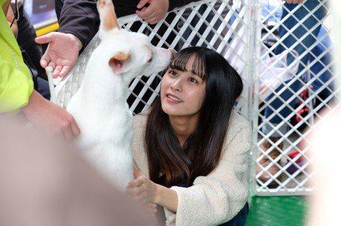 女團「AKB48 Team TP」日前出席流浪狗活動,耐心地照顧可愛的毛小孩們,齊聲呼籲大家「以領養代替購買」,詩雅養了11歲的紅貴賓,表示:「不能只是因為一時的寂寞、一時的可愛,因為我們的決定可能...