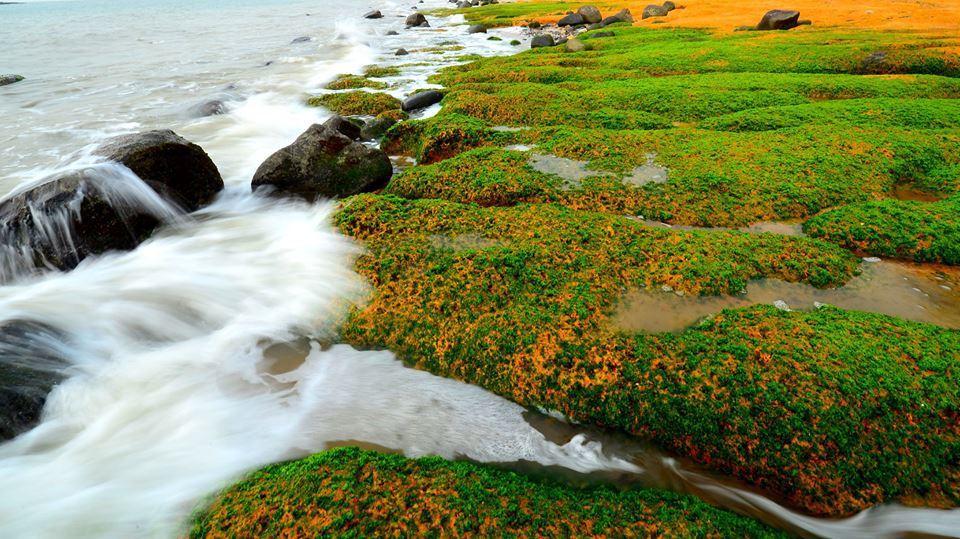 烈嶼南山頭的綠石槽最近成為民眾拍照打卡的新熱點,知名攝影達人許小西在網路上分享的...