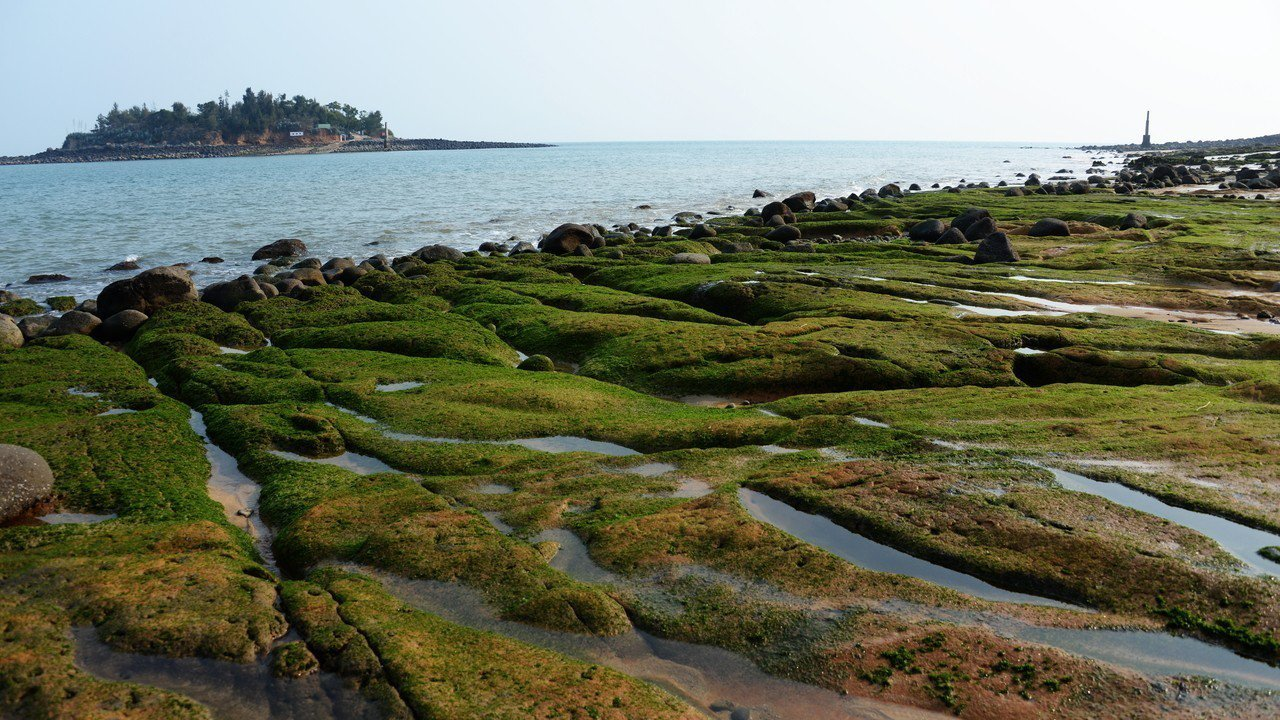 來金門現在除了可以追藍眼淚外,還可以找尋烈嶼南山頭的綠石槽美景,讓人流連忘返。圖...